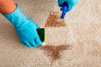 Легкий способ очистить ковер: всего 3 компонента